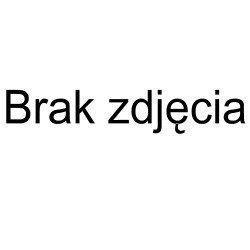 Asystent CRM 2013 Biznes - wer. elektroniczna / lic. doż